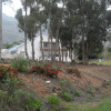 Greyton plot for sale – superb value – Ref: JLSL
