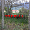 Greyton plot for sale – business and/or residential use with lovely views – Ref: CMHP