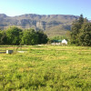 Greyton property for sale – vacant plot on mink & manure belt – Ref: HVP