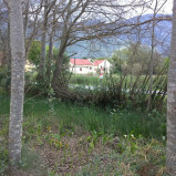 Versatile Greyton plot for sale – business and/or residential use – Ref: SHP