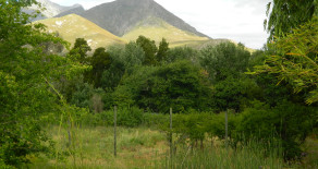 Large Greyton plot for sale with established plum orchard – Ref: UTPP