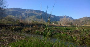 Fabulous mountain views from this plot for sale in Greyton – Ref: YVSP