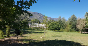 Subdivision development opportunity – prime residential or business stand for sale on Greyton Main Street – Ref: DDP